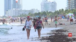 VIDEO: Wisatawan Florida Diminta Waspadai Badai Dorian