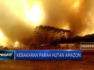 Kebakaran Parah Masih Menghantui Hutan Amazon