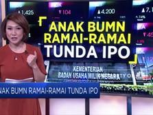 Anak BUMN Ramai-Ramai Tunda IPO