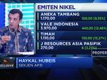 Ekspor Nikel Dilarang,  AP3I Nantikan Tax Insentif