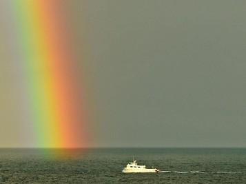 Saat Pebisnis Pelayaran RI Anteng-anteng Saja di Omnibus Law