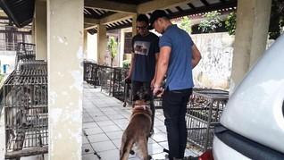 Kasus Anjing Milik Bima Aryo Berujung Protes Warga