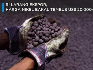 RI Larang Ekspor, Harga Nikel Bakal Tembus US$ 20.000/ton