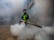 Awas! Gejala Mirip Covid, Penderita Malaria Bisa Kena Corona