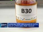 Aprobi Siap Produksi 9 Juta Kilo Liter B30 Per Tahun