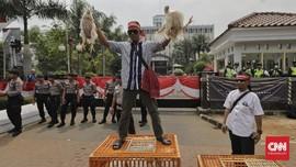 Harga Ayam Anjlok ke Rp8.000 per Kg, Peternak Kembali Protes