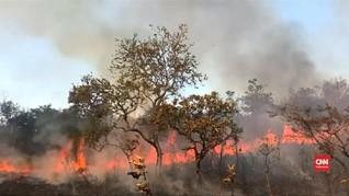 VIDEO: Kebakaran Amazon Semakin Meluas, Warga Putus Asa