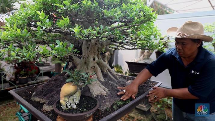Dinas Kehutanan dan Pertamanan Provinsi DKI Jakarta menggelar pameran flora dan fauna yang diikuti sebanyak 140 peserta pameran dari berbagai daerah.