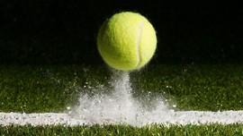 Tebak-tebakan Warna Asli Bola Tenis: Hijau atau Kuning