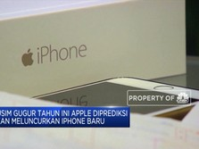 Apple Diprediksi Segera Rilis Ponsel Baru