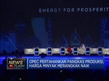 OPEC Kekeuh Pangkas Produksi, Harga Minyak Bergejolak