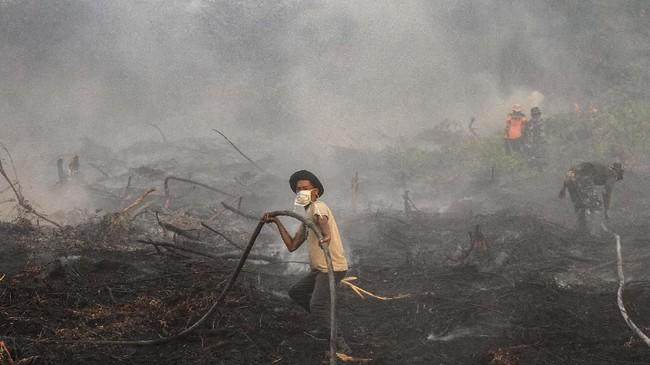 Karhutla di Riau hingga saat ini belum bisa dipadamkan. Kabut asap jadi masalah tersendiri bagi warga Riau. (ANTARA FOTO/Rony Muharrman)