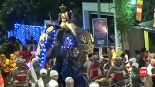 VIDEO: Gajah Mengamuk di Sri Lanka Cederai Sejumlah Orang