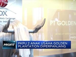 PKPU 2 Anak Usaha Golden Plantation Diperpanjang