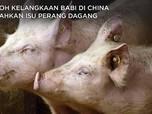 Heboh Harga Daging Babi di China Kalahkan Isu Perang Dagang