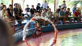 Di tempat lain di pulau itu, pengunjung dengan penuh semangat menempatkan taruhan pada perlombaan monyet berenang. (AFP/Nhac Nguyen)