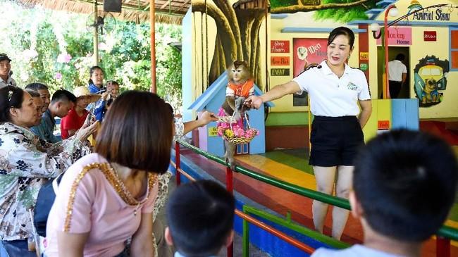 Kerumunan pengunjung datang setiap minggu, sebagian besar dari Vietnam, China, dan Rusia yang terbang melintasi teluk dari kawasan resor pantai Nha Trang. (AFP/Nhac Nguyen)