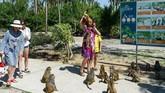 Ada sekitar 1.200 monyet di pulau kecil itu, tempat eksperimen vaksin pernah dilakukan oleh para ilmuwan Soviet sebelum diubah menjadi objek wisata pada 1990-an.(AFP/Nhac Nguyen)