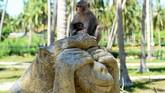 Di Pulau Monyet, kera-kera mengendarai sepeda motor, mengangkat beban, dan menembak bola basket dalam pertunjukan sirkus yang berakhir dengan seekor monyet dengan rok berenda yang mengumpulkan uang saweran para penonton. (AFP/Nhac Nguyen)