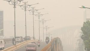 FOTO: Kabut Asap Karhutla yang Makin Pekat di Riau