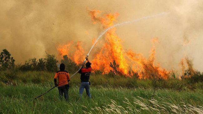 Lahan Kosong Dekat Bandara Banjarmasin Terbakar