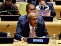 Di PBB, Indonesia Tegaskan Mustahil Ulangi Referendum Papua