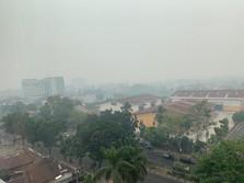 Pak Jokowi, Kualitas Udara Pekanbaru Sudah Berbahaya