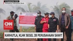 VIDEO: Karhutla, KLHK Segel 28 Perusahaan Sawit