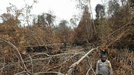 Jokowi Tegur Para Perangkat yang Tak Bisa Atasi Karhutla Riau