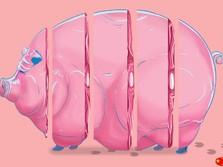 RI Swasembada Babi, Tapi China Tidak