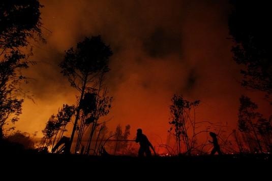 Waspada! Kualitas Udara di Pekanbaru & Palangkaraya Berbahaya