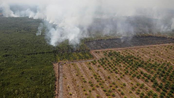 Krakatau Ngamuk, Wiranto Ditusuk, Hingga Perginya BJ Habibie
