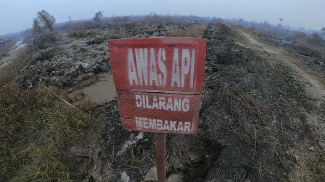 BNPB: Fenomena Langit Merah Jambi Disebabkan 'Hamburan Mie'