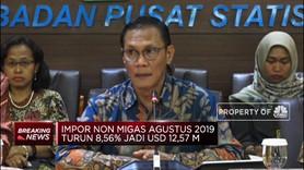 BPS : Nilai Impor Agustus 2019 Mencapai USD 14,20 M