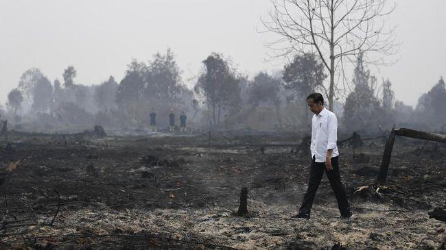 Sajak Sepatu Kotor Fadli Zon: Ada Sandiwara di Balik Karhutla