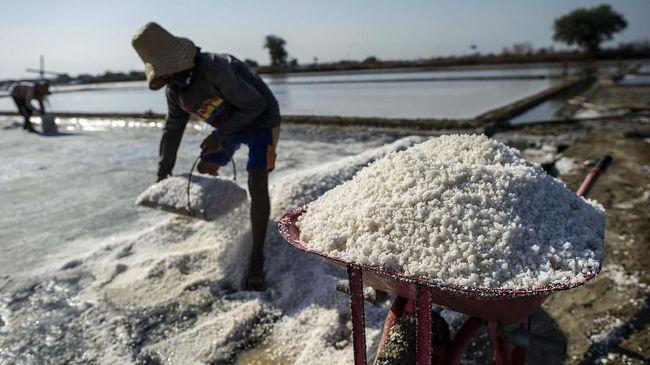 Kemendag Usul Revisi Beleid Agar Garam Jadi Kebutuhan Pokok
