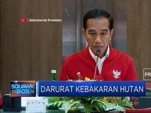 Presiden Jokowi Marah Penanganan Karhutla Lamban