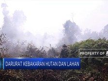 Asap Pekat Ancam Indonesia