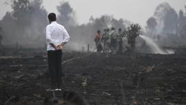 WWF Usulkan Status Darurat Karhutla di Indonesia