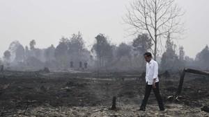 FOTO : Kemeja Putih Jokowi di Tengah Hitam Karhutla Riau