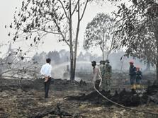 Duh, Lokasi Ibu Kota Baru Tak Ada Jaminan Bebas Bencana Asap