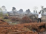 Jokowi Gerah! Ogah Dicap Tak Becus Selesaikan Karhutla