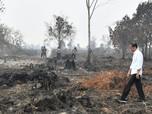 Jokowi: Siapapun Bos Perusahaan yang Bakar Hutan, Hukum!