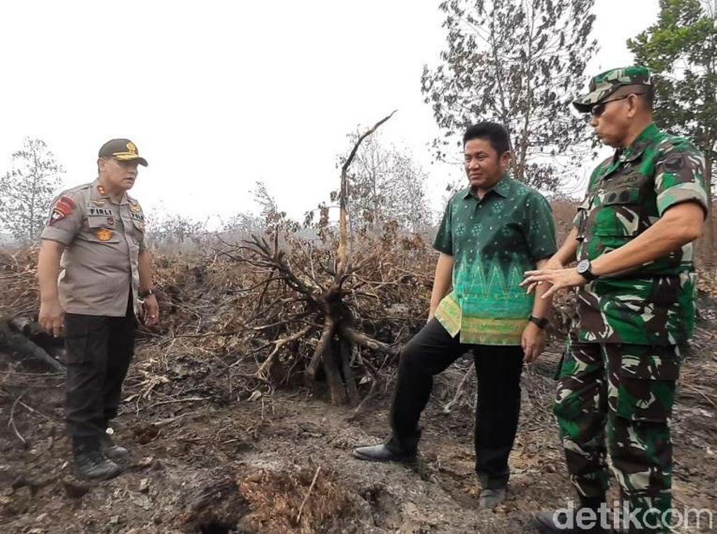 Gubernur hingga Kapolda Sumsel Tinjau Lokasi Karhutla