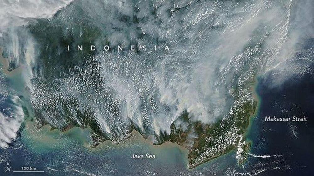 The Moderate Resolution Imaging Spectroradiometer (MODIS) pada satelit Aqua NASA menangkap gambar Kalimantan ini pada 15 September 2019. Asap melayang di atas pulau dan telah memicu peringatan kualitas udara dan peringatan kesehatan di Indonesia dan negara-negara tetangga. (dok. NASA)