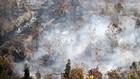 Polisi Tangkap Tangan Pembakar Lahan di Kalimantan Selatan