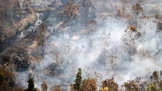 Hujan Buatan Berhasil Turunkan Titik Api di Kalimantan
