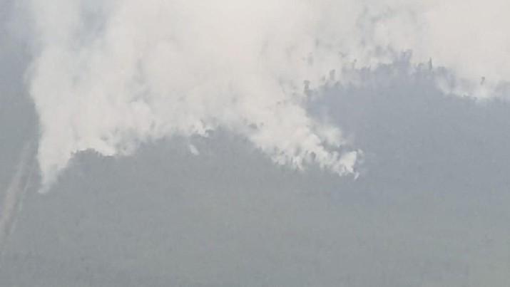 Ratusan ribu warga Sumatra dan Kalimantan terjangkit ISPA akibat karhutla