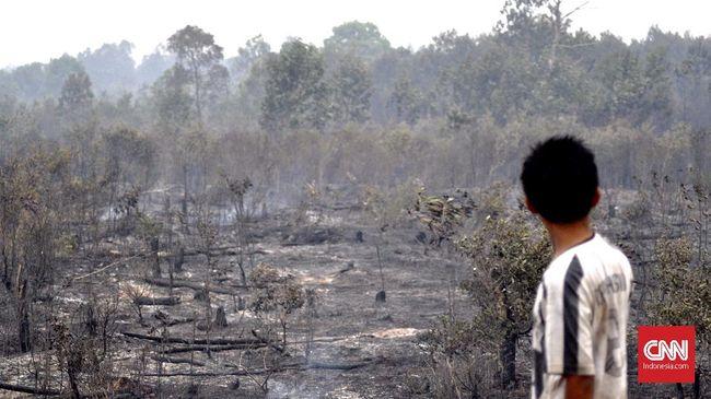 Titik Api Karhutla Turun 90 Persen Dalam 5 Hari