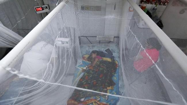 FOTO: Demam Berdarah Mematikan di Honduras